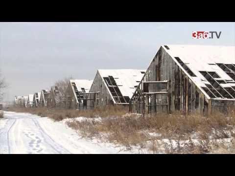 «Черновский овощевод» находится на грани банкротства