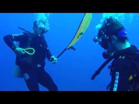Scuba diving in Brazil