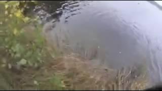 Не удачная рыбалка