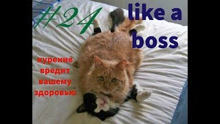 BEST CUBE #4 LIKE A BOSS, ПРИКОЛЫ, ФЕЙЛЫ, КАРМА, РЖАЧ