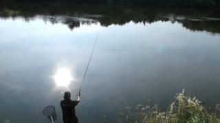 Река десна в смоленской области рыбалка