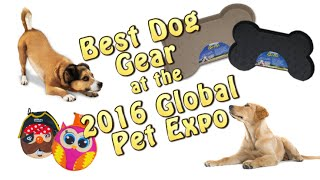 Top Dog Gear for 2016