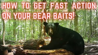 How to get FAST ACTION on your bear bait