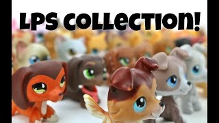 My LPS Collection! (MajesticPetsTV)