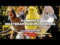 Kombinasi masteran burung juara