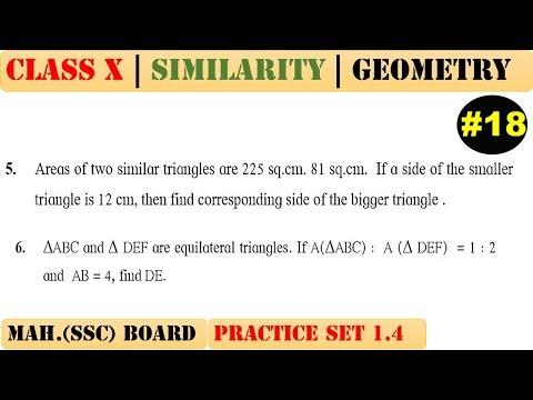 Similarity [Part 18] | Class 10 | Practice set 1.4 (MATHS 2) | Mah. (SSC) Board | Q5 and Q6