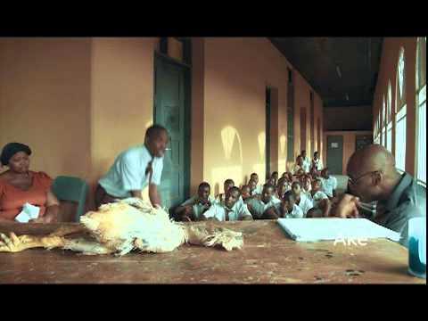 Cultural Imperialism in Ake