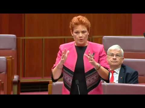 Senator Pauline Hanson's speech on section 18C and free speech.