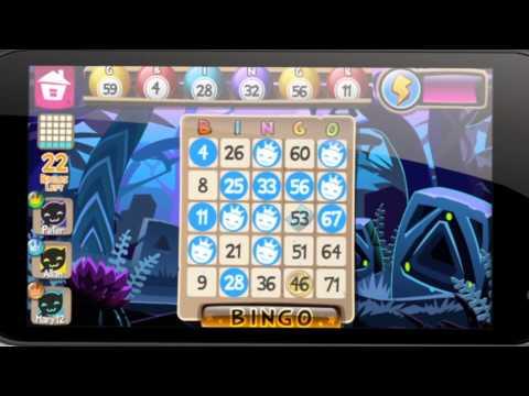 Video of Bingo