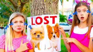 Maggie and Nastya - a story how dogs were lost