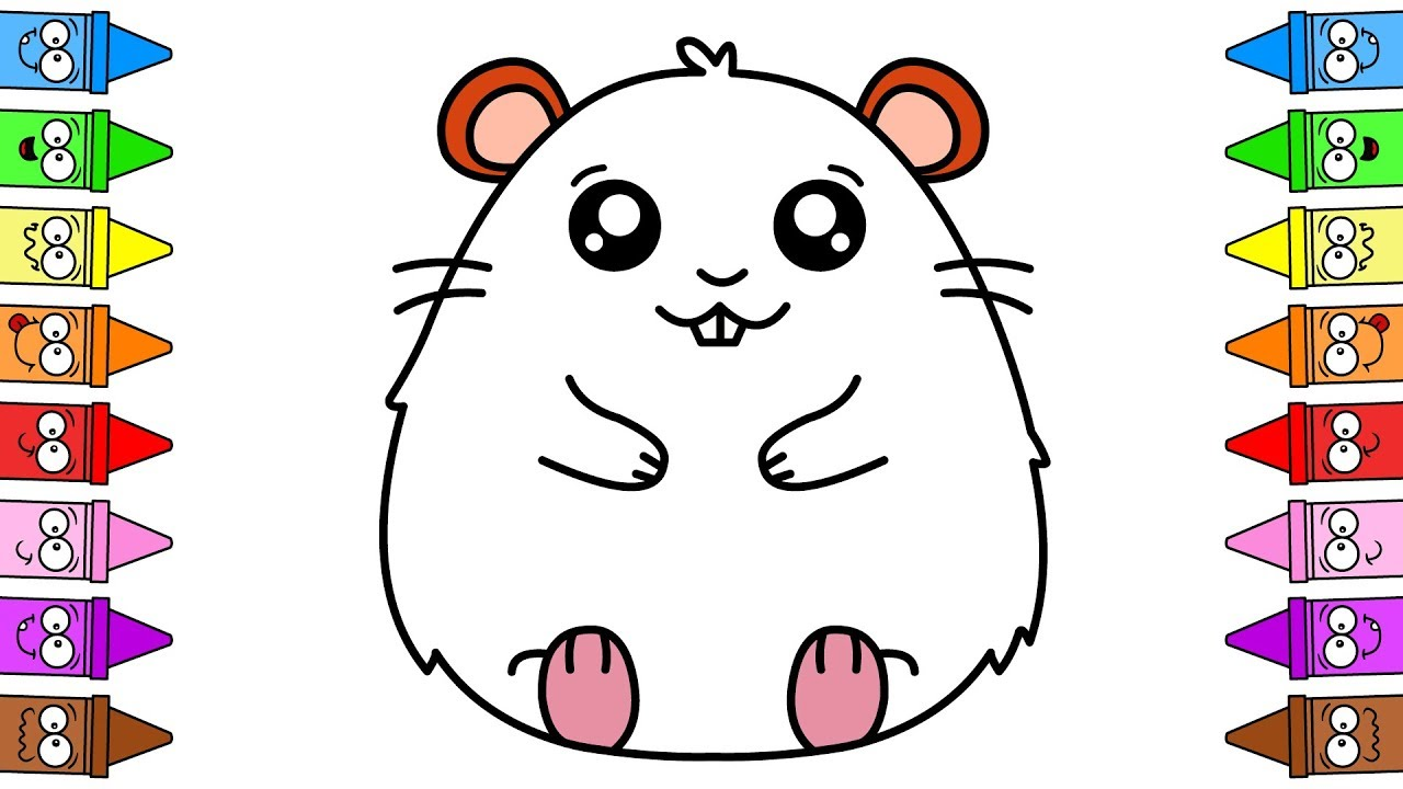 drawing hamster how to draw hamster