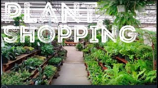 Plant Shopping at Echter's Nursery