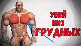 Как накачать низ грудных мышц