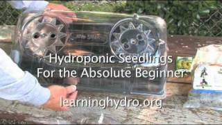 How to start seeds for a Hydroponic Garden / Starter Plugs and Jump Start