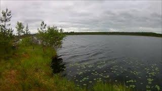 Рыбалка на озере черном в гатчине