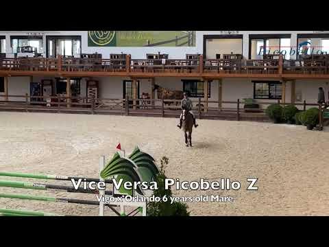 Mother Vice Versa Picobello Z