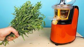Что если выжать сок из травы Тархун? Получится Тархун или нет? alex boyko