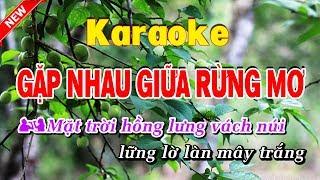 Gặp Nhau Trong Rùng mơ Karaoke nhạc sống - gap nhau giua rung mo karaoke nhac song