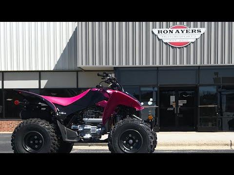 2021 Honda TRX250X in Greenville, North Carolina - Video 1