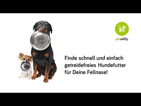 Einfach getreidefreies Hundefutter finden