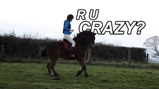 Are You Crazy? [Horse Fails]