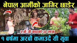 नेपाल आर्मीको जागीर छाडेर ९३ लाखको घडेरी बेचेर यो के गर्दै छ्न गुल्मीमा ३५ बर्सिय एक युवाले Gulmi