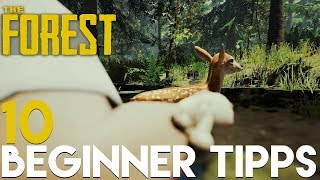 10 ANFÄNGER TIPPS!   The Forest   V.0.73b