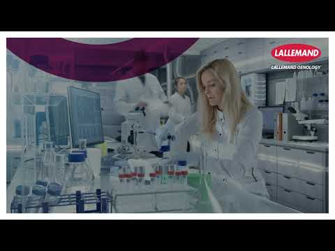 Controlled Wine Bacteria Production at Lallemand