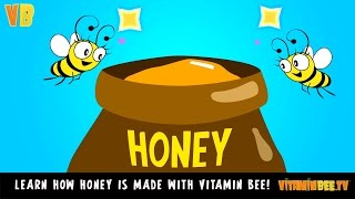 """Vitamin Bee: """"Honey: How It's Made"""""""