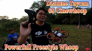 Test Flight Diatone Taycan 6S Digital FPV