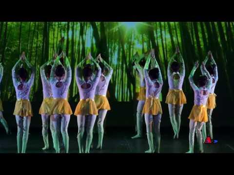 2017美国首都华盛顿大华府地区少儿春晚 - 舞蹈:小荷尖尖