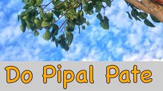 Do Pipal Patte - Navrati Special Song 2020 | Jagdish Sanwal