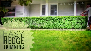How To Quickly Trim Bushes and Hedges:  DIY Timelapse