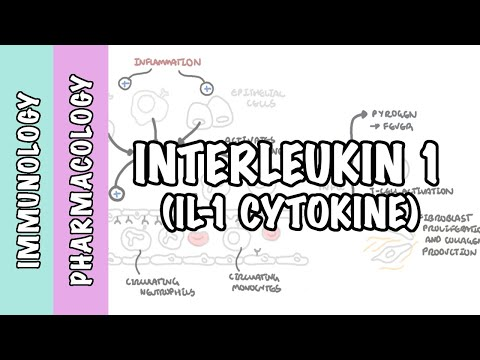 Immunologia - fizjologia interleukiny 1 (IL-1) i farmakologia antagonistów IL-1 (IL-1ra)