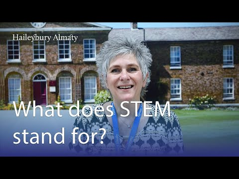 What does STEM stand for?