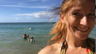 Ginger Life in Hawaii