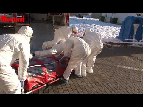 Klinika paraziták tisztítása