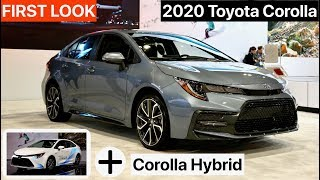 2020 Toyota Corolla Sedan + Hybrid - FIRST LOOK
