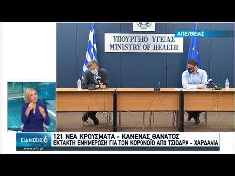 Η συνέντευξη Τύπου από το υπουργείο Υγείας | 04/08/2020 | ΕΡΤ