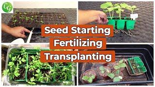 Plant Propagation - Seed Starting, Fertilizer For Seedlings, Transplanting Plants Masterclass!
