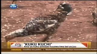 Kuku Kuchi Ambaye Huuzwa Bei Ya Juu