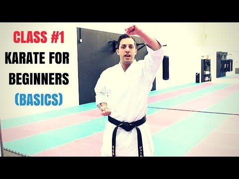 Martial Arts for Beginners – Lesson 1 / Basic Karate Cobra Kai Techniques