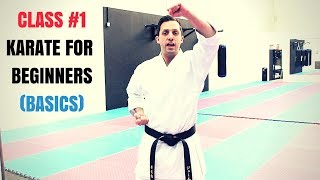 Martial Arts for Beginners – Lesson 1 / Basic Karate Kid Techniques - Download this Video in MP3, M4A, WEBM, MP4, 3GP