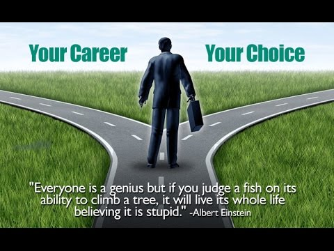 Career Path for information technology - Part 1