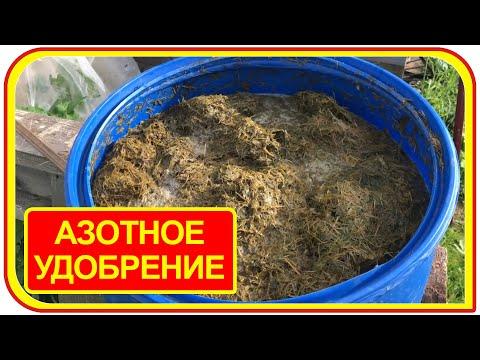 Азотное удобрение для огурцов из травы. Травяной настой