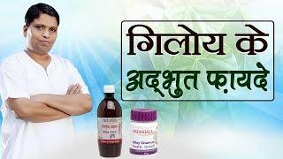 गिलोय के अद्भुत फायदे | Acharya Balkrishna