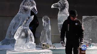 Giant African Penguin Family Ice Sculpture