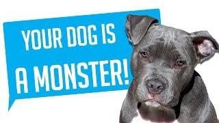 r/Entitledparents - YOUR DOG IS A MONSTER!  (Reddit Entitled Parents)