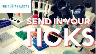 Mail UAMS Your Ticks - Only In Arkansas