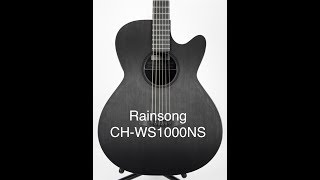 Rainsong Concert Hybrid Series CH WS1000NS Review